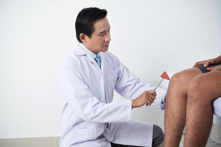 knee joint reflex